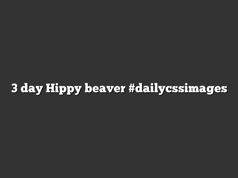 3 day Hippy beaver #dailycssimages