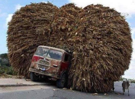 I veicoli più sovraccarichi del mondo