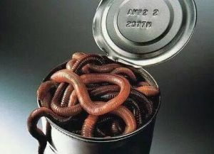tin can full of worms