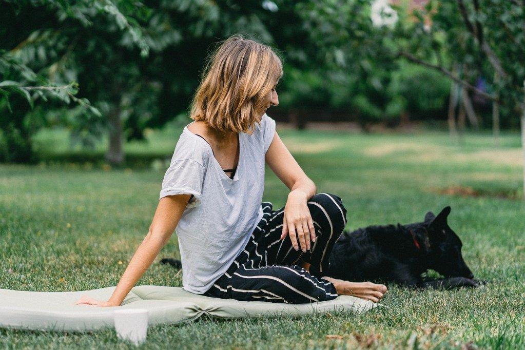 dog, friend, animal