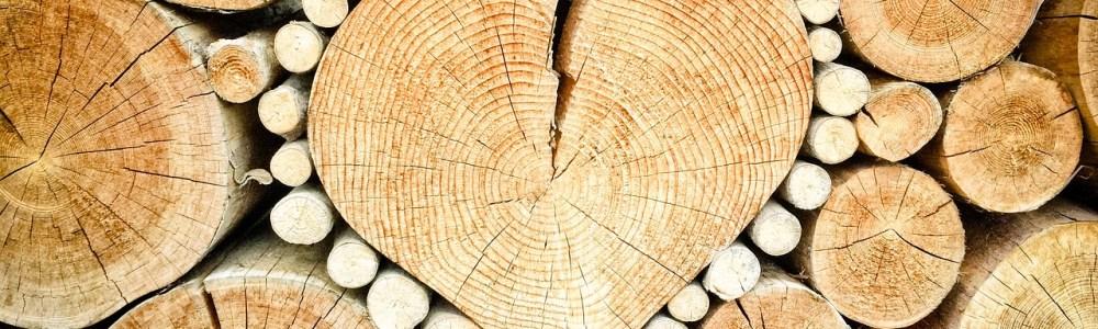 broken heart support wood