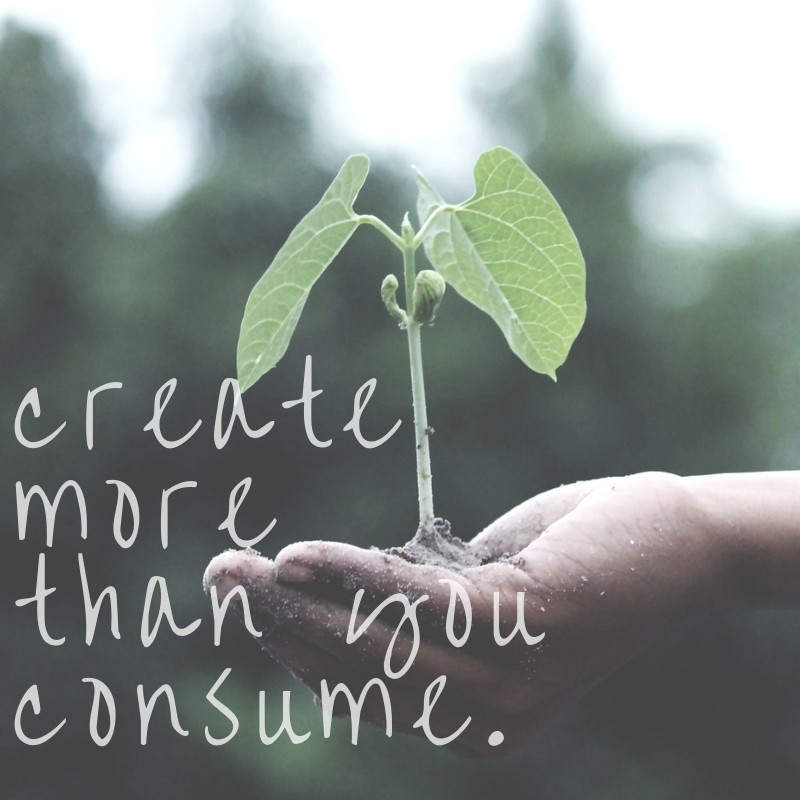 A Call To Action - Create More Than You Consume (Photograph Source Pexels)