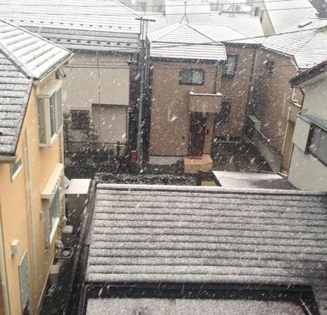Salju di Tokyo 4 Februari 2014