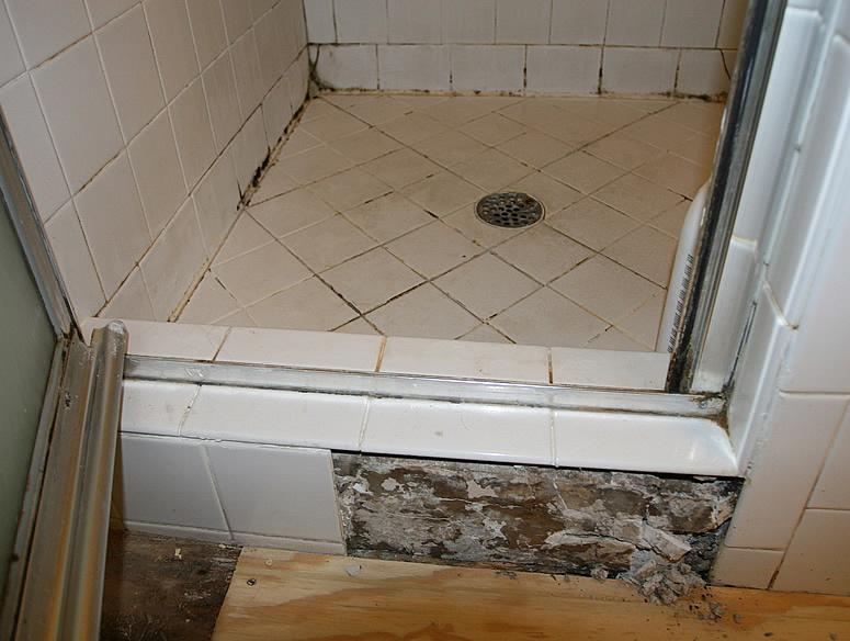 Image Result For Black Mold Around Bathtub