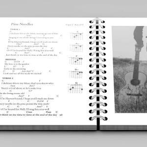 Daniel Steinbock Songbook, Volume 1