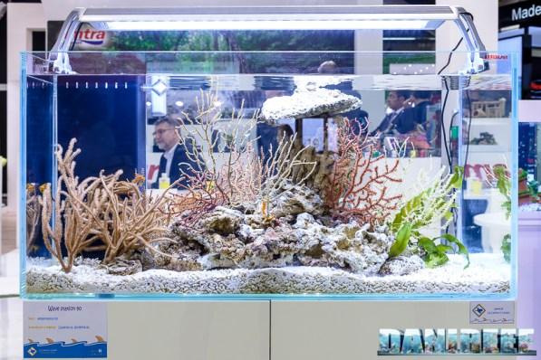 201705 acquario marino, amtra, croci, layout, zoomark 10 Copyright by DaniReef