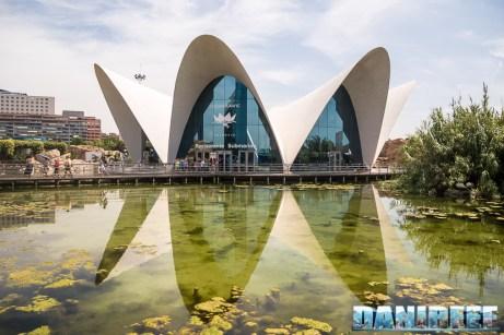 2017_06_Viaggio_a_Valencia_88