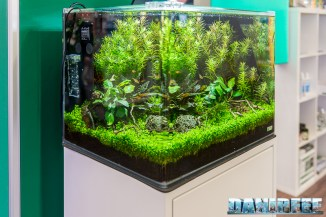 201805 aquascaping, dennerle, interzoo, layout 21 Copyright by DaniReef