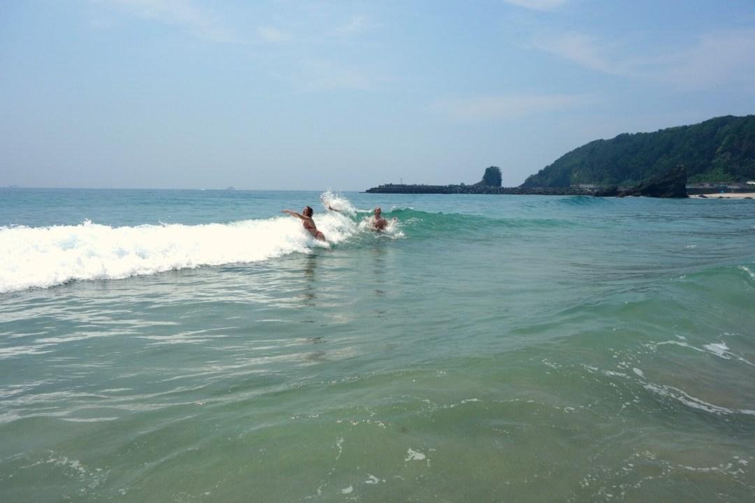 Vandhunde i en strand i Japan