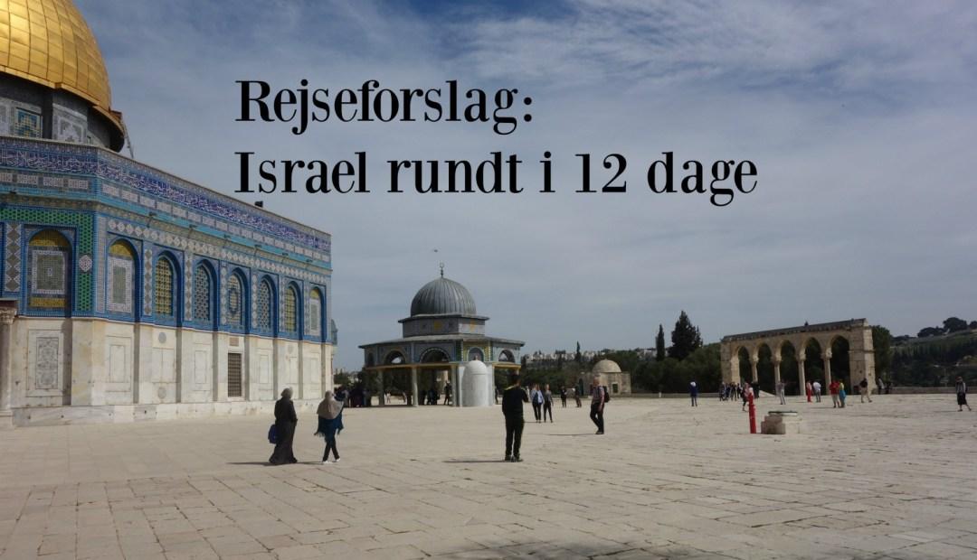 Rejseforslag Israel rundt i 12 dage