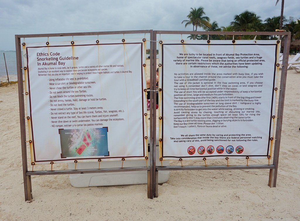 Akumal skildpadde paradis regler