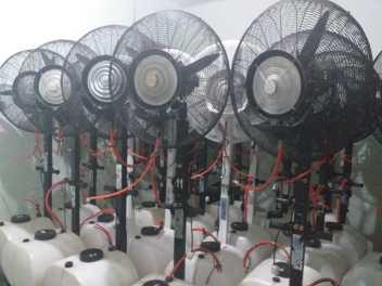 Sewa misty fan di Serengseng sawah jakarta selatan Wa 081291820537