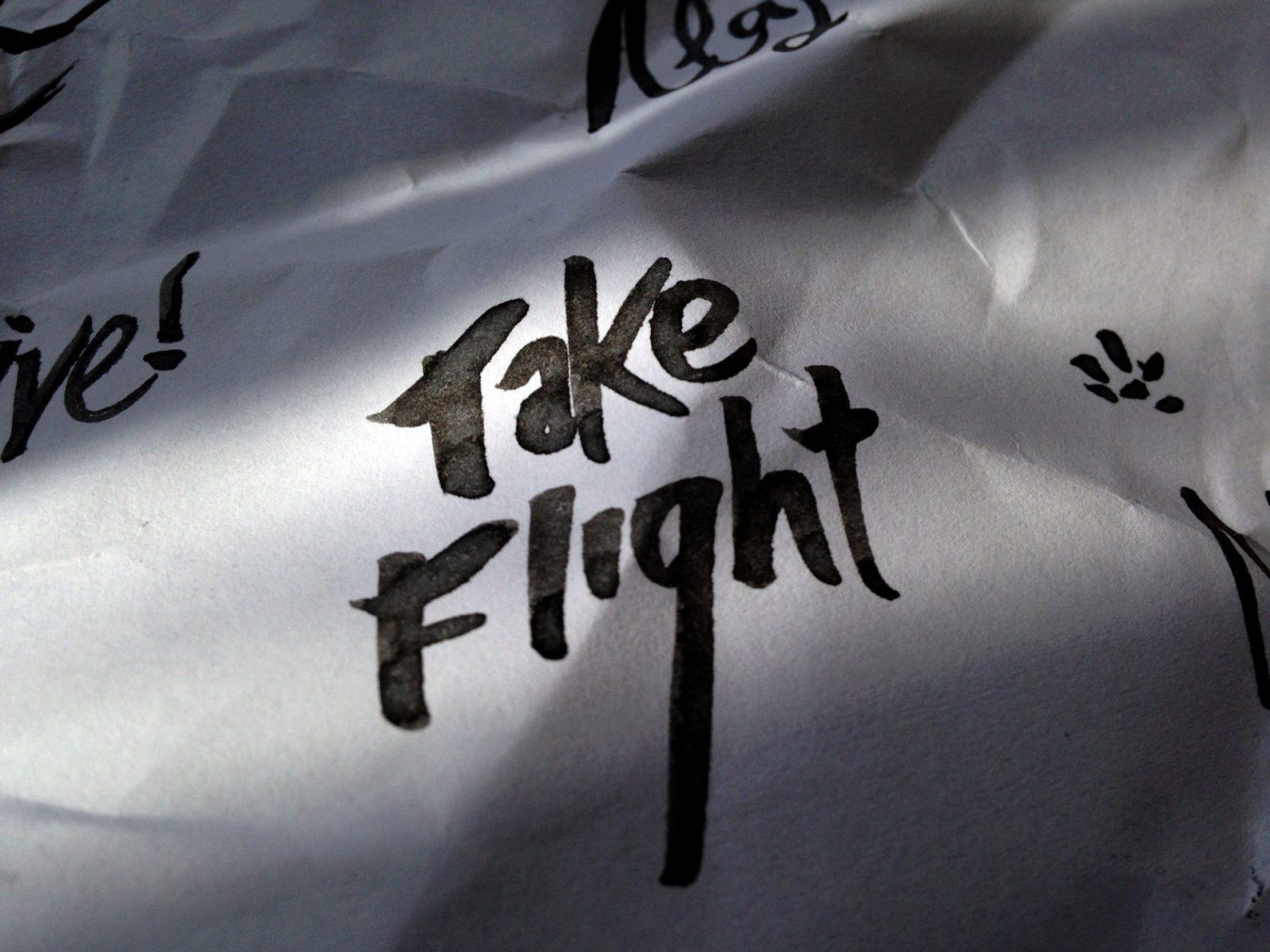 TakeFlight1