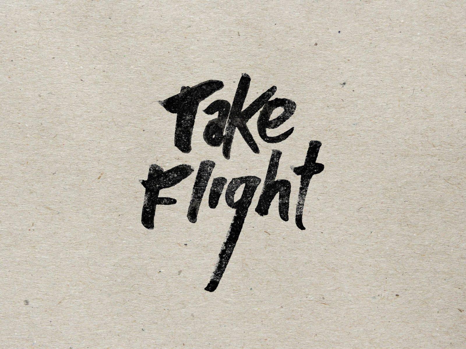TakeFlight2