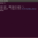 VirtualBox Share In Ubuntu