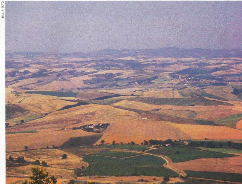 The sienese hills lie within the Chianti Colli Senesi zone, whose Chianti production is second only to Chianti Classico.