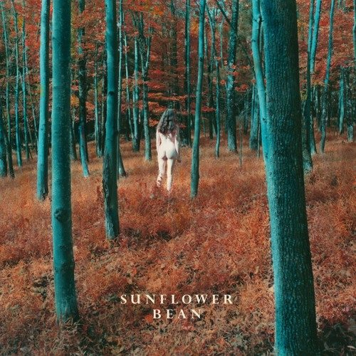 Nieuwe single Sunflower Bean