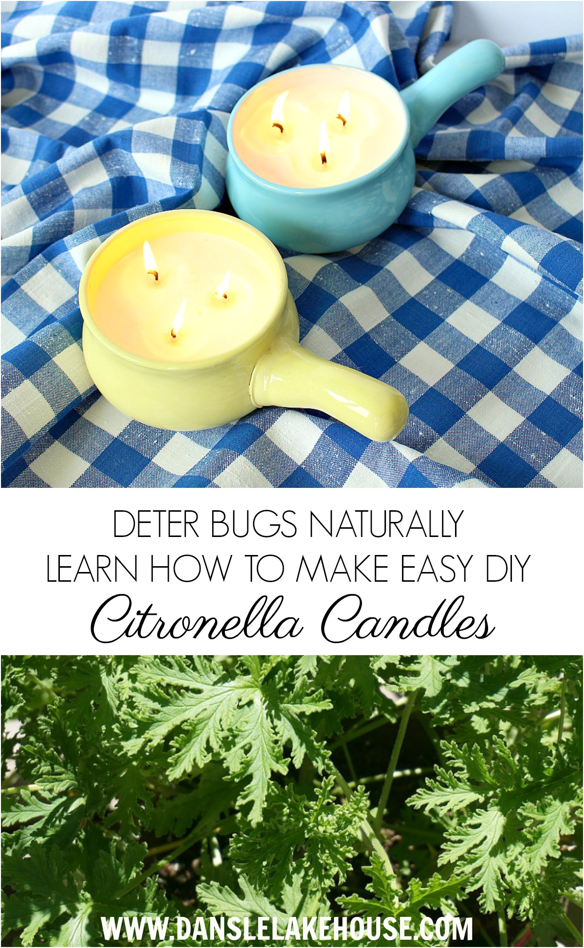 Learn How to Make Your Own DIY Citronella Candles for Summer | Get Rid of Bugs Naturally | Essential Oil Recipes and Crafts | Dans le Lakehouse