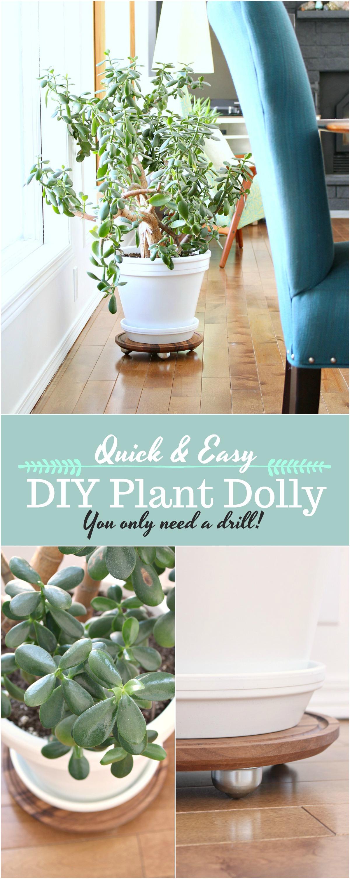 DIY plant dolly tutorial