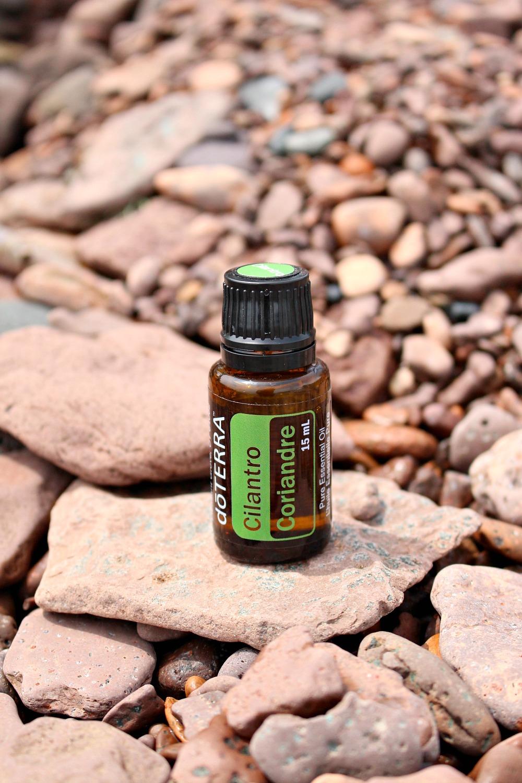 Cilantro Essential Oil Uses