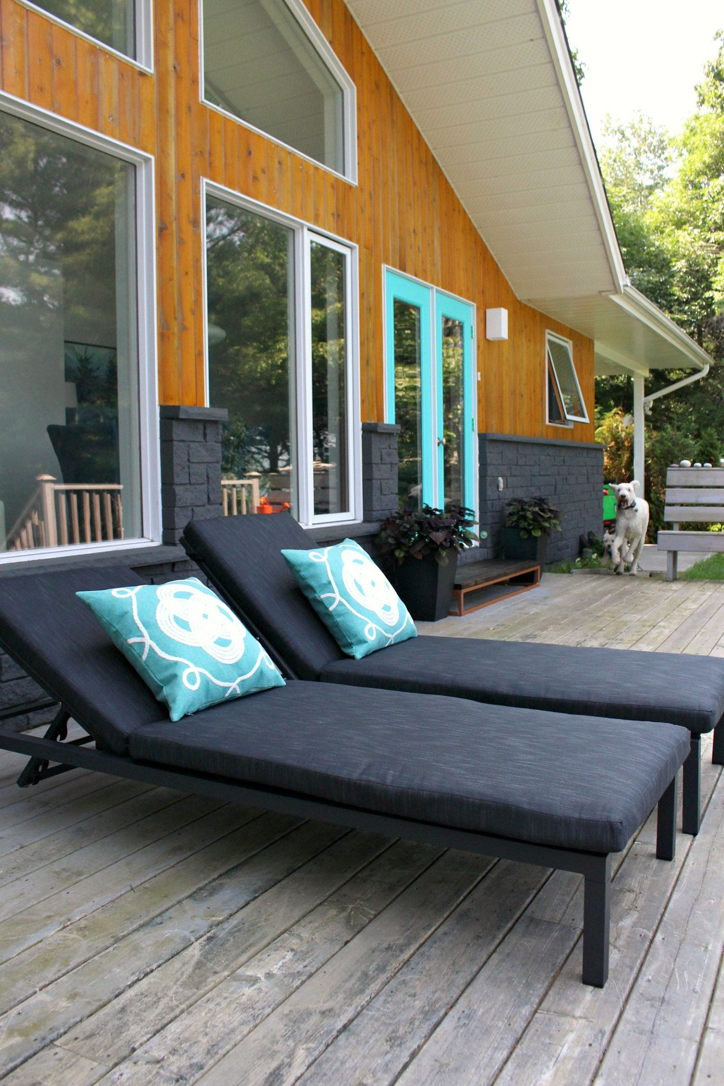 Modern Patio Lounger Review