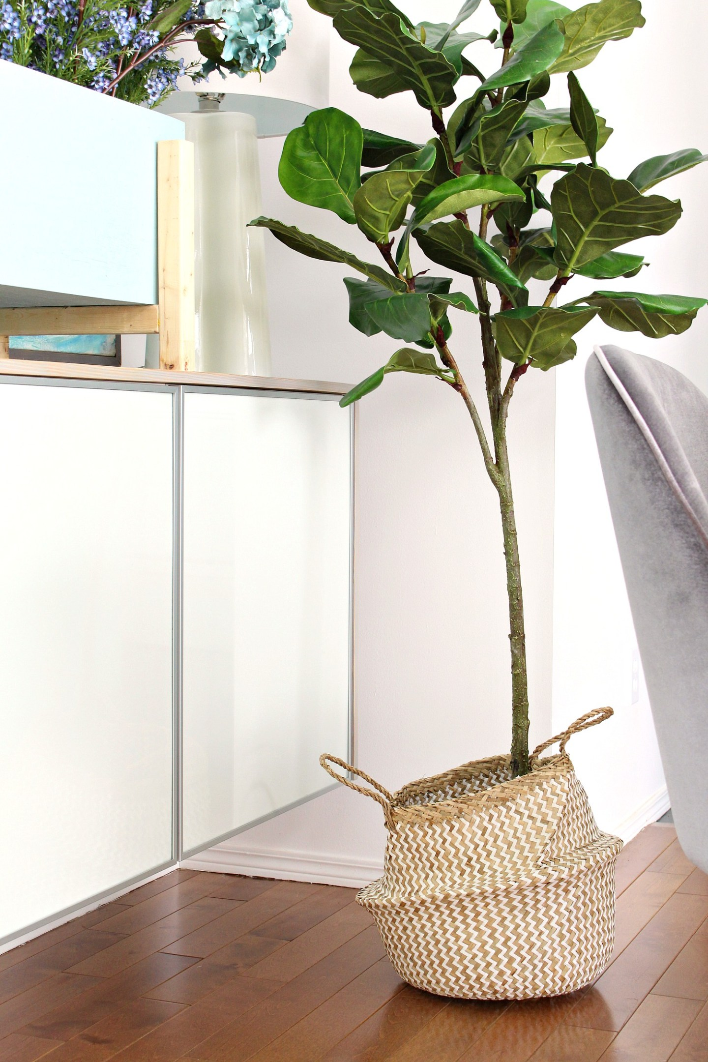Fiddle Leaf Fig in a Basket