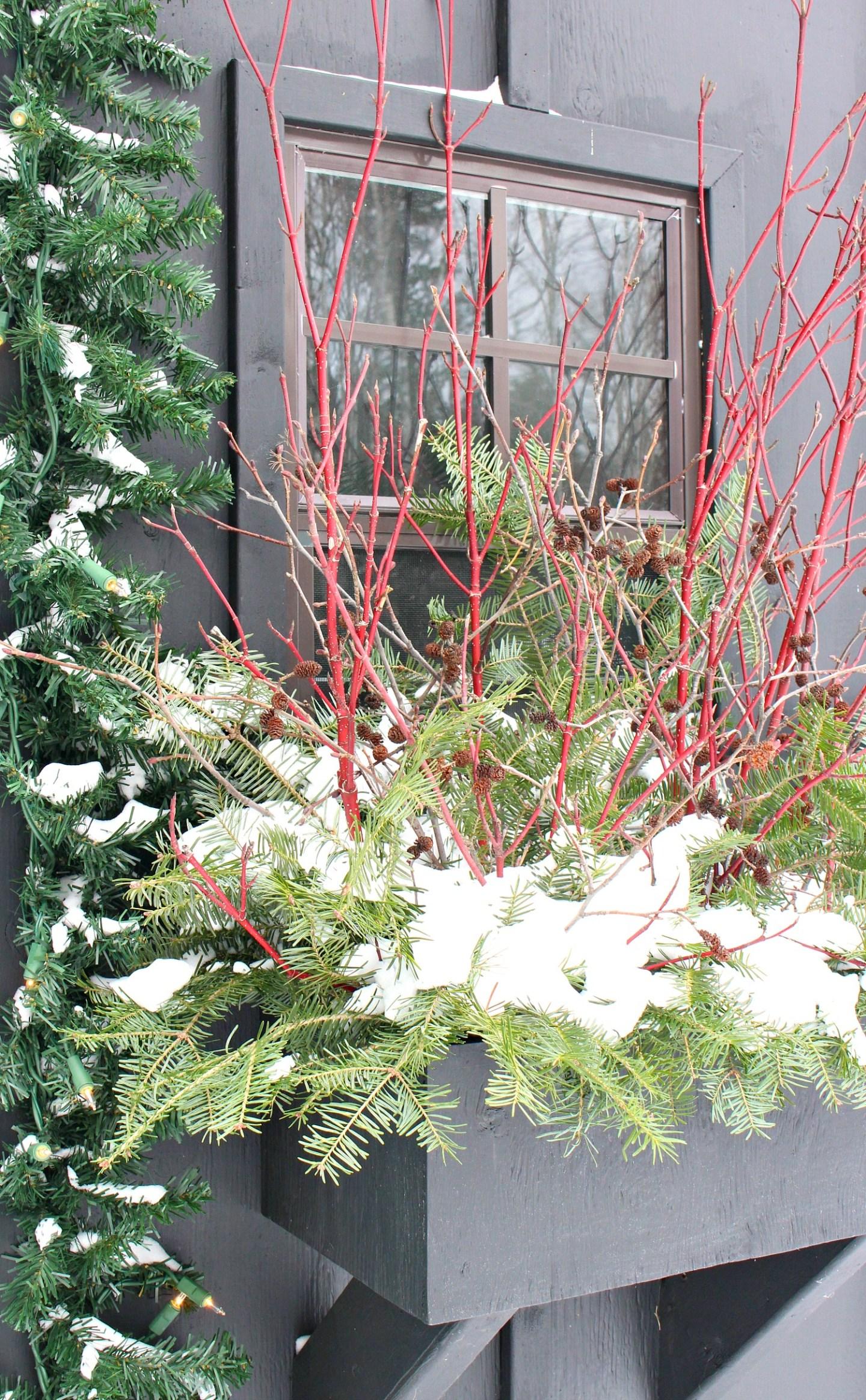 Budget-Friendly Winter Window Box Ideas