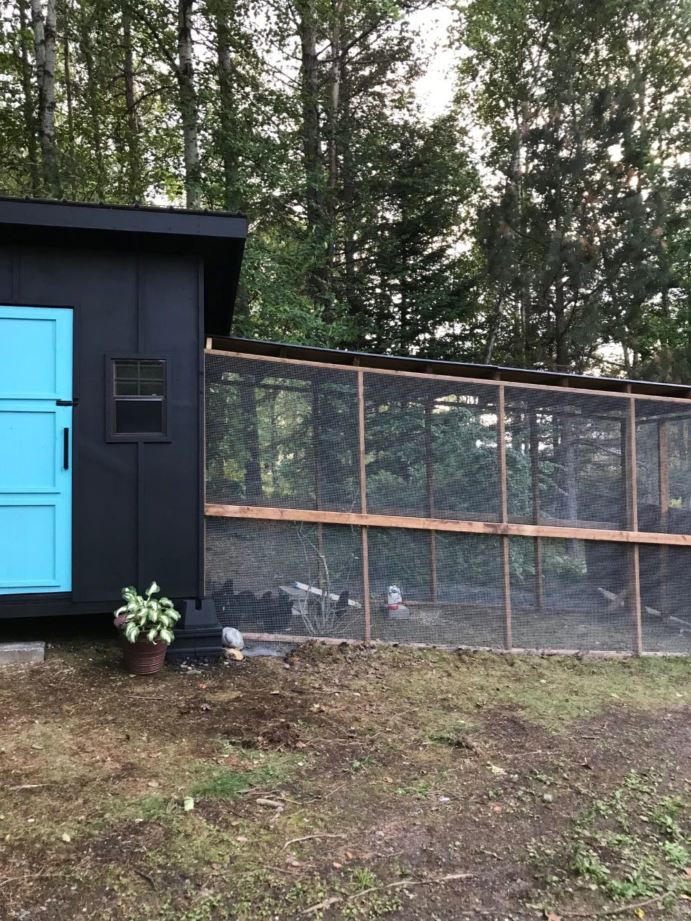 How to Build a Chicken Coop on a Hill