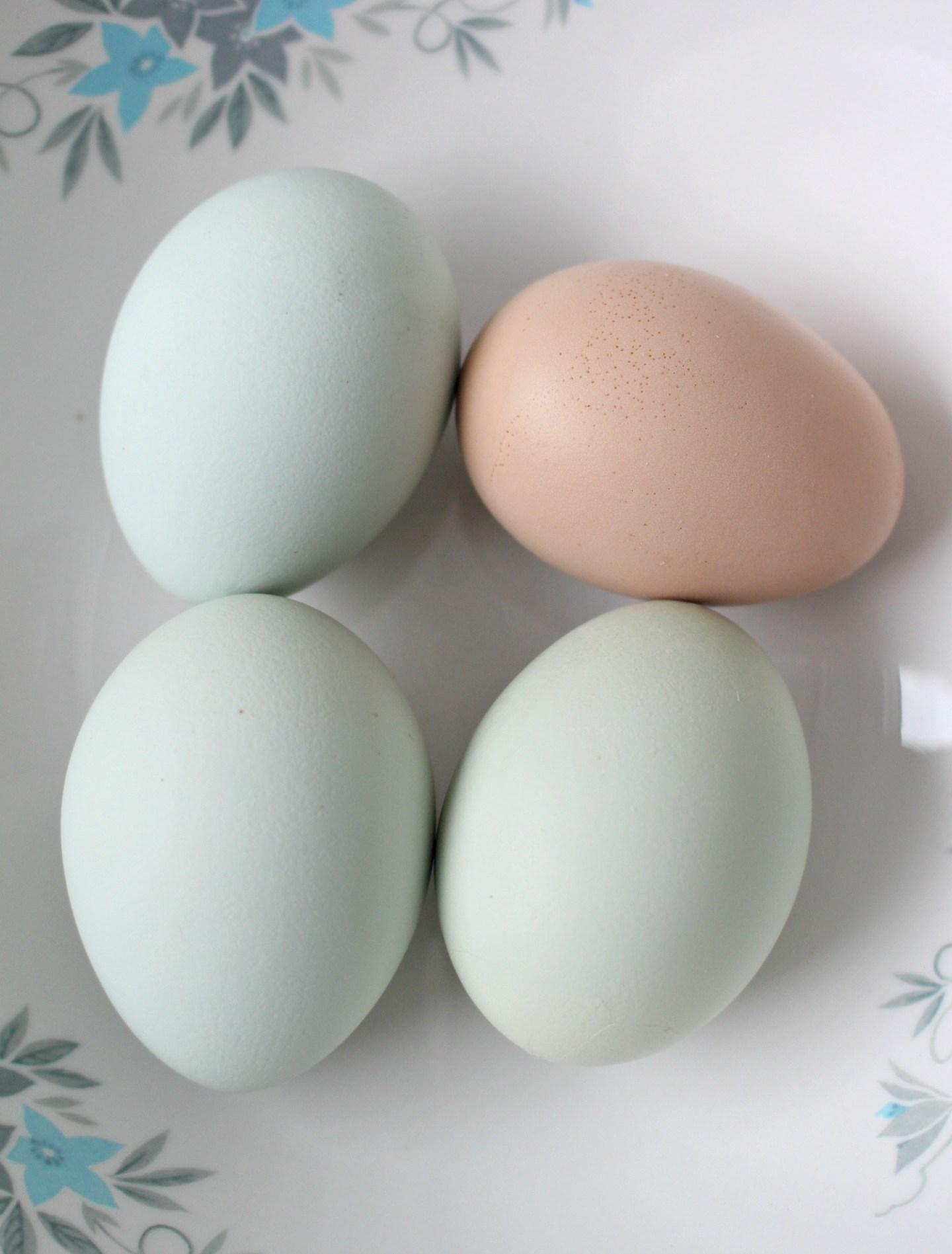 Naturally Blue Eggs