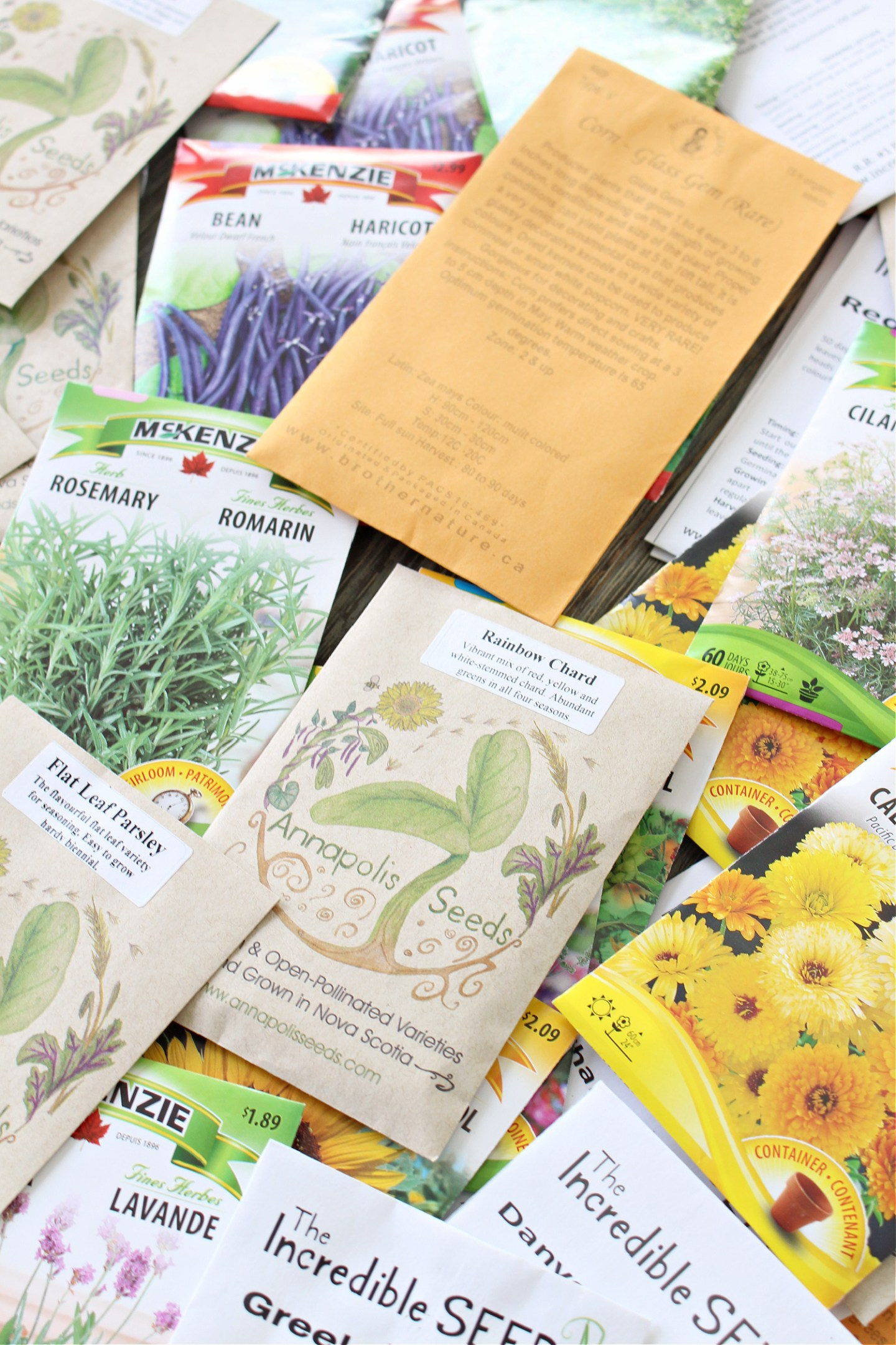 Where to Buy Seeds in Canada