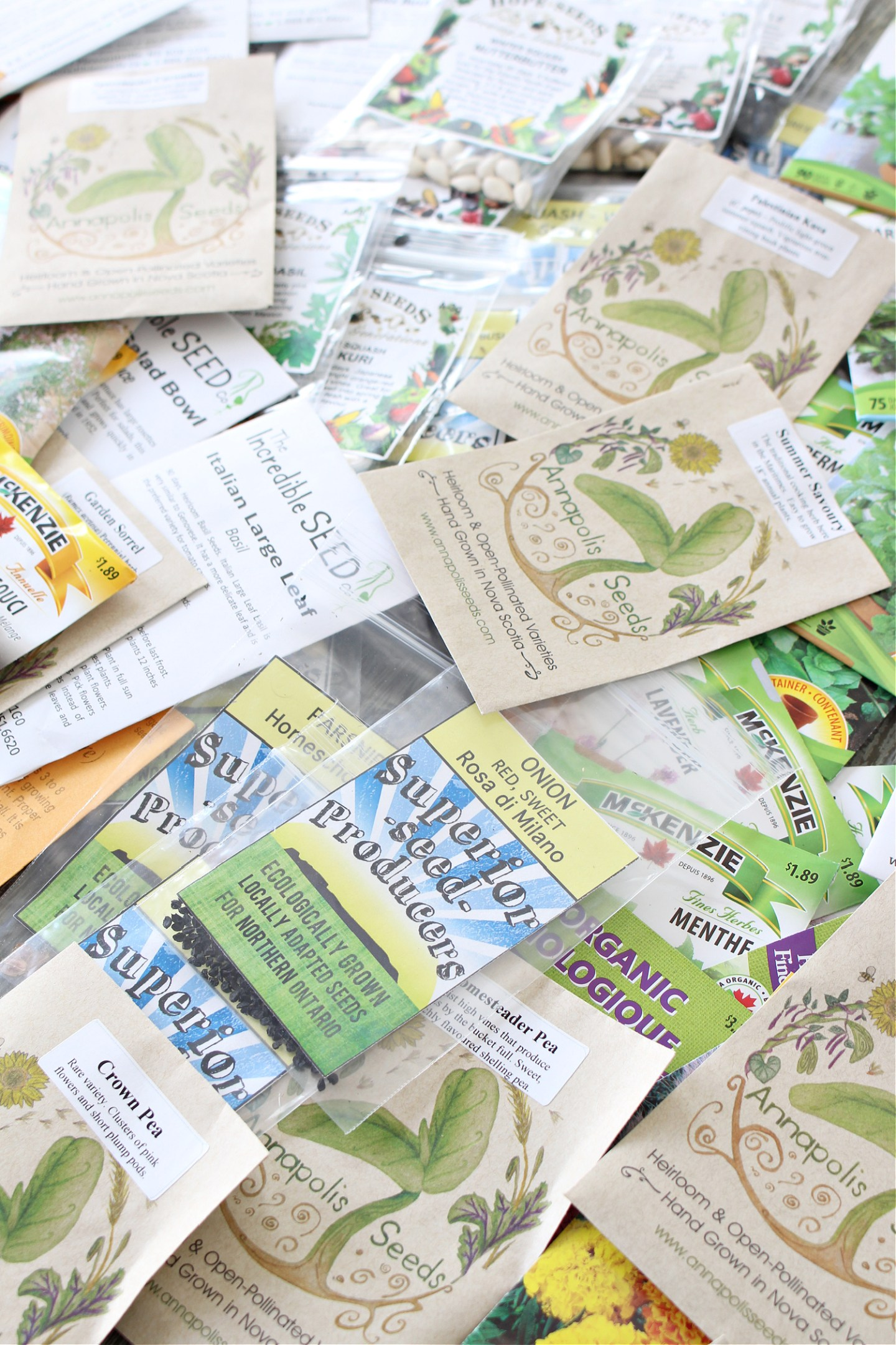 Where to Find Seeds for Cold Climates in Canada
