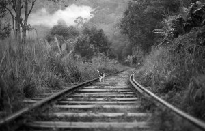 Tamara Jullien - Railway of Life