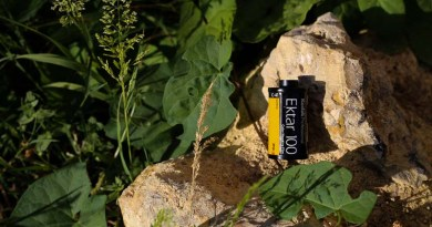 Pellicule : Kodak Professional Ektar 100