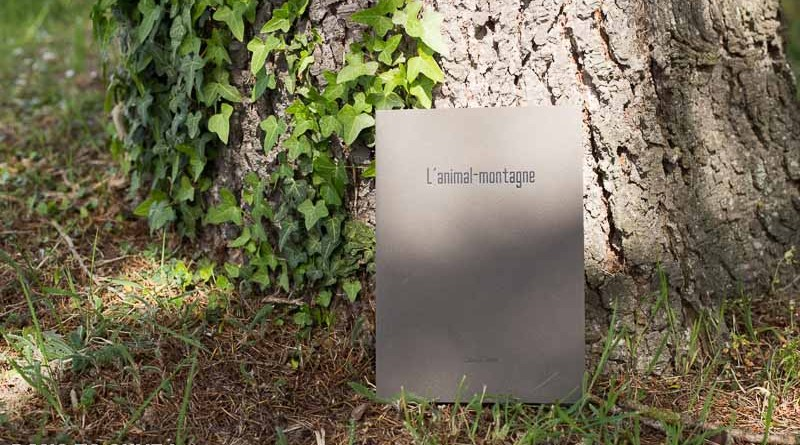 Livre : L'animal-montagne de David Tatin