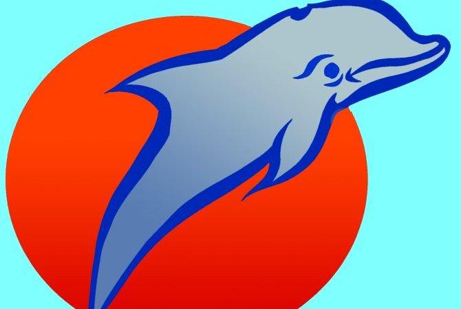 Logo Delphin Training