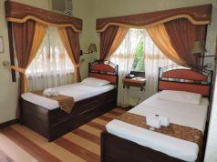 Standard room twin bed (8)