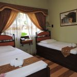 Standard room twin bed (6)