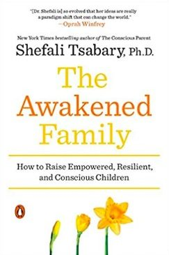 The Awakened Family cover