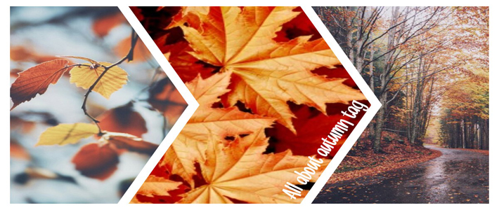 all about autumn tag