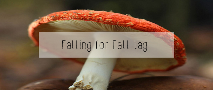 falling for fall tag