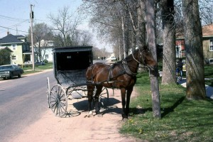 Horse and Buggy in Hazleton, Iowa