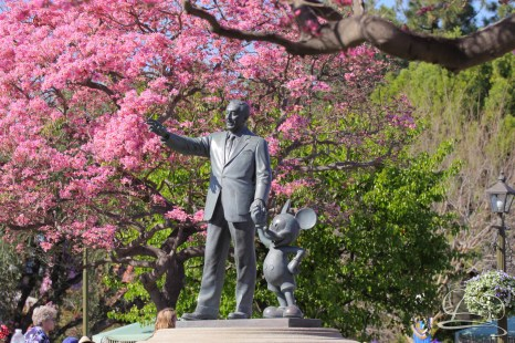 Springtime at Disneyland - February_21_2016-7