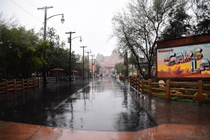 DisneylandCaliforniaAdventureRain 1
