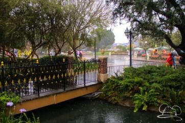 DisneylandResortRainyDay-41