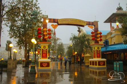 DisneylandResortRainyDay-59