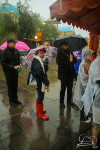 DisneylandResortRainyDay-60