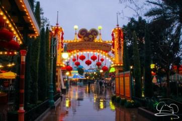 DisneylandResortRainyDay-74