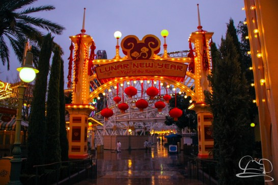 DisneylandResortRainyDay-76