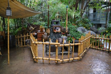 Rainy Day at the Disneyland Resort-122
