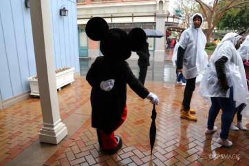Rainy Day at the Disneyland Resort-81